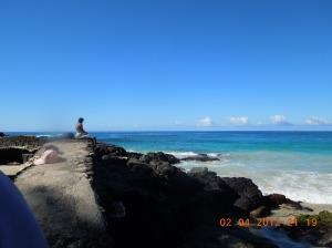 hawaii 008